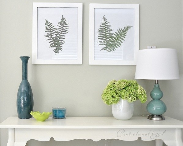 Preserve a few fronds of a fern from your yard behind glass.