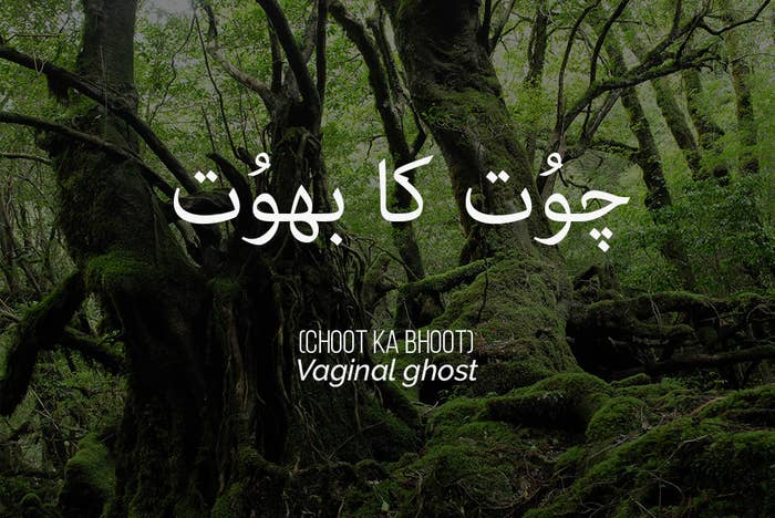 12 Urdu Insults The English Language Needs