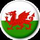 Welshican