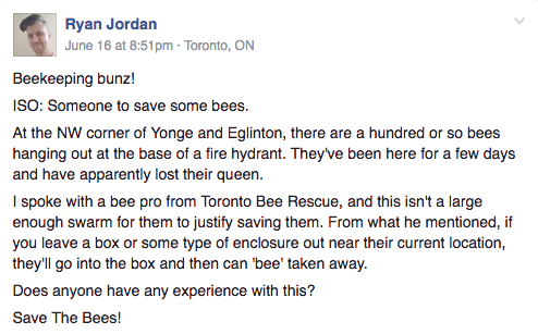 The post, written by Ryan Jordan, said there was about a hundred bees on a fire hydrant, apparently without a queen.Bunz has more than 50,000 members who list items for trade but there's also the occasional post seeking help for odd tasks — like moving bees.