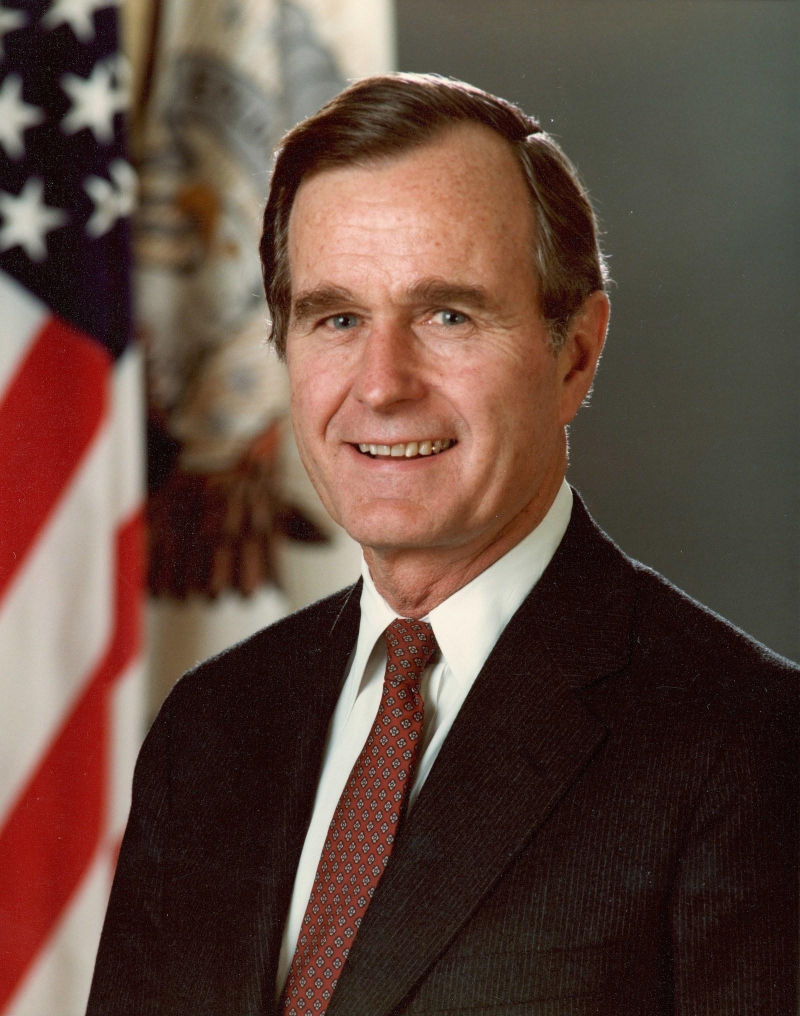 Bush's official presidential portrait.