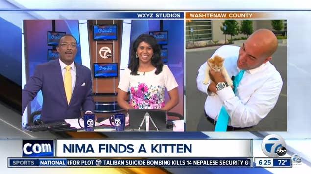 Nima Shaffe, un journaliste et présentateur sur WXYZ-TV Channel 7, dit à BuzzFeed que le chaton traînait sur le parking du commissariat de police où ils filmaient ce jour-là.