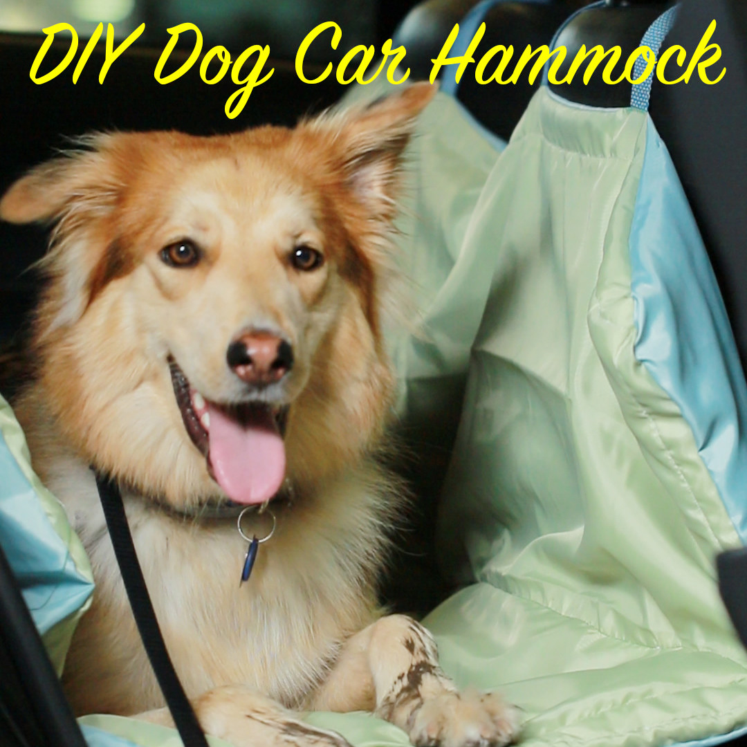 Here's A DIY Dog Hammock For Your Car Making Car Washes Less Frequent