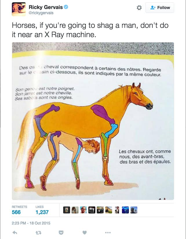 Facebook Appears To Think This Picture Of A Horse Is Porn