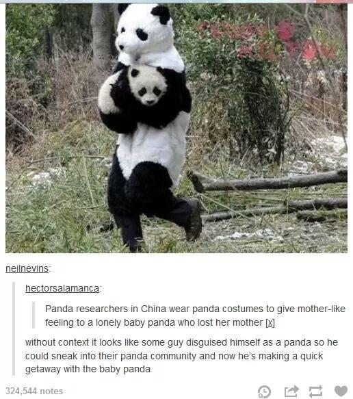 The panda escape.
