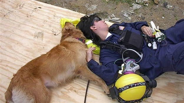 The pair worked 12-hour shifts together for 10 days with search and rescue team Texas Task Force 1. Bretagne was one of 300 or so dogs working after 9/11.