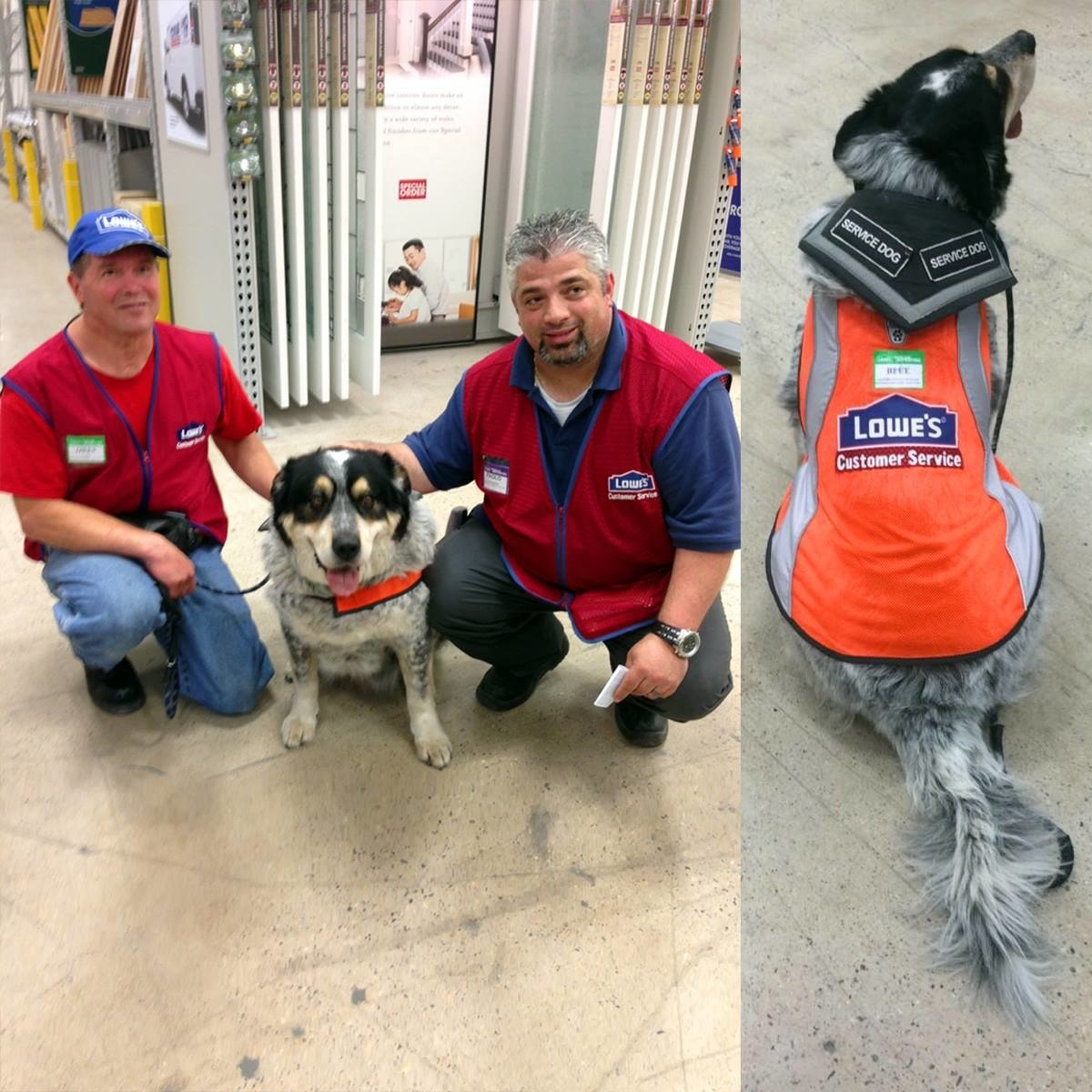 This Hardware Store Hired An Unemployed Man And His Support Dog