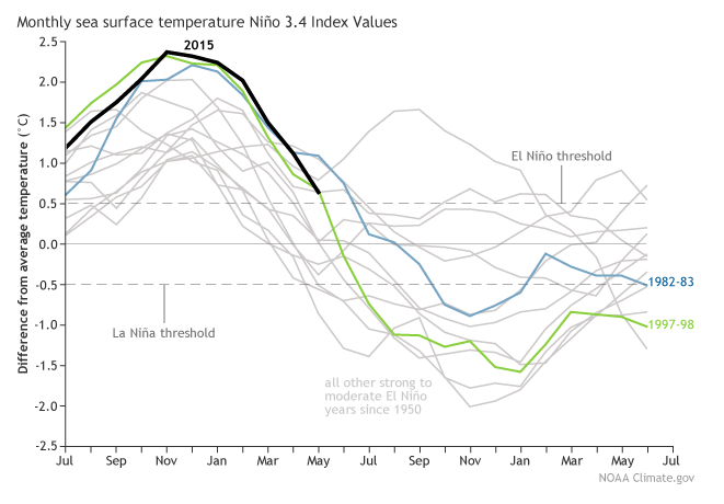 A graphic compares sea surface temperatures during current and past El Niño events.