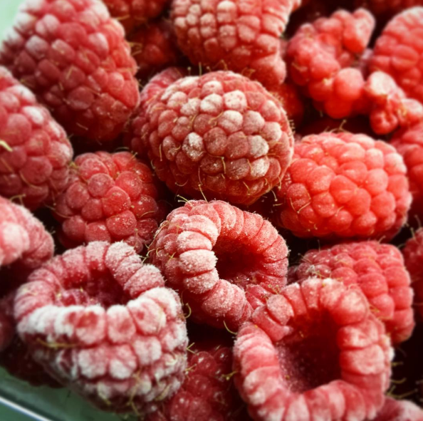 """""""You can often find deals on in-season fruit. Buy in season, stock up, and freeze whatever you're not going to eat. You can use the frozen fruit in homemade smoothies or juices in the coming months. Buying smoothies and juices on the go can definitely add up.""""—Heidi Swanson, blogger at 101 Cookbooks"""