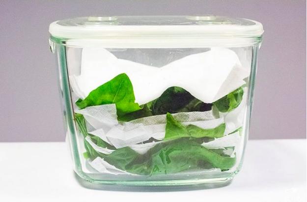Coloca las lechugas o espinacas en un tupper y agrega toallas de papel para que absorban la humedad.