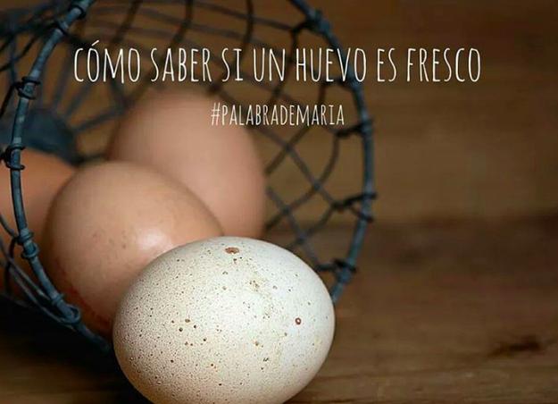 Identifica un huevo fresco de uno ya pasado con ayuda de un vaso de agua.