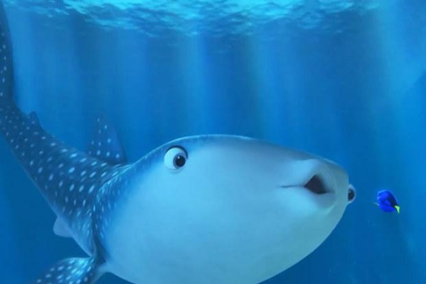 Y nuevamente pasas horas hablando cetáceo, como cuando viste Buscando a Nemo por primera vez.