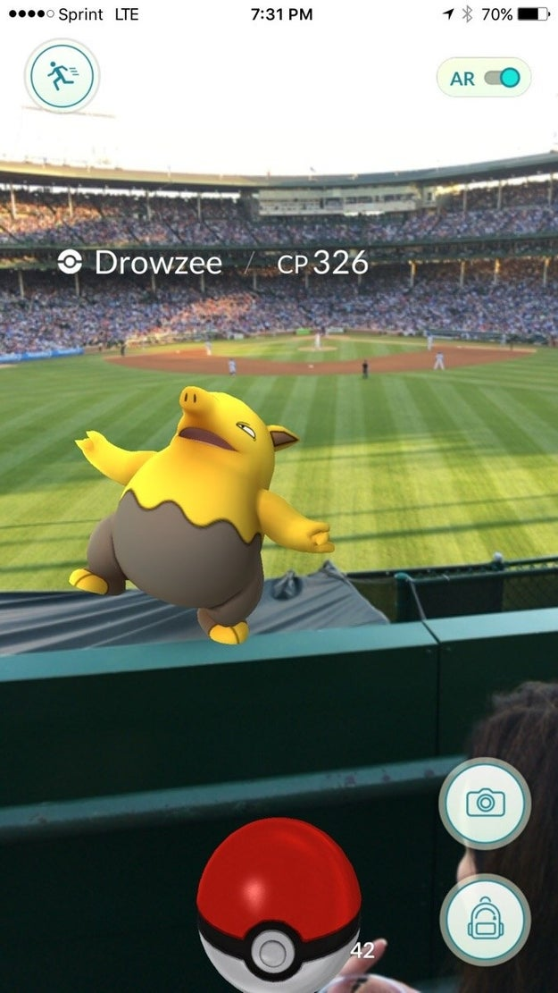 Drowzee gets a little drowsy at Wrigley Field in Chicago.