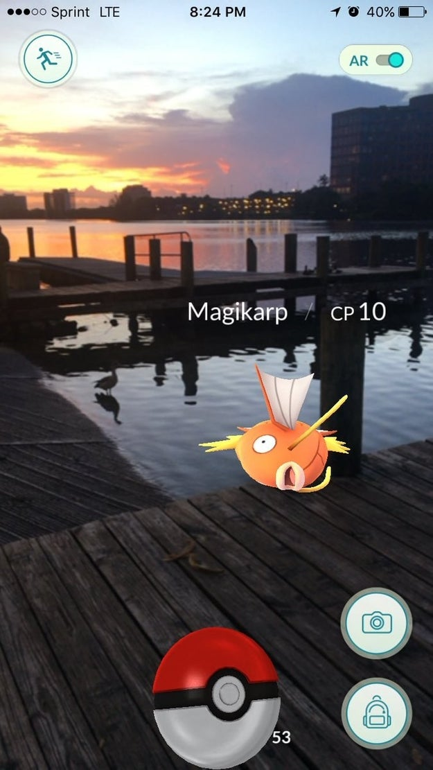 After several attempts, Magikarp successfully flops onto this Florida pier.
