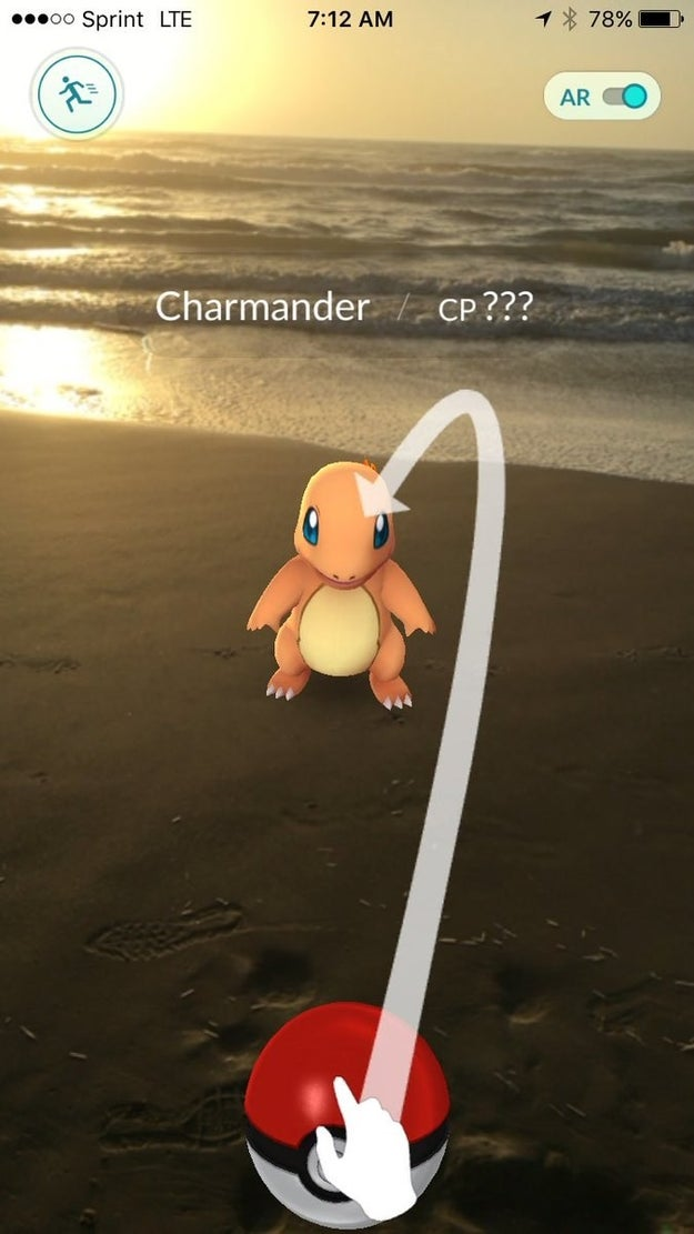 Charmander dries off after taking a dip in the water at South Padre Island in Texas.