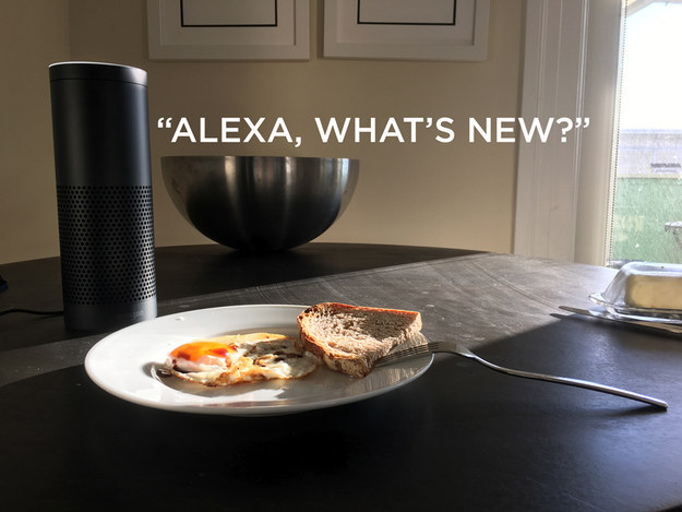 Alexa can read you a custom news briefing over breakfast.