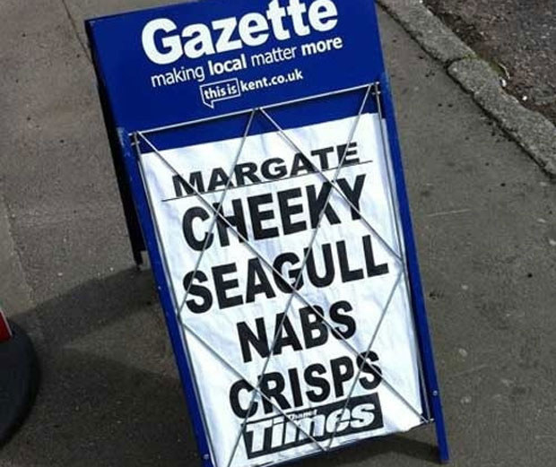 See? This is the problem, never reporting two sides. Maybe they were the seagull's crisps, hmmm?