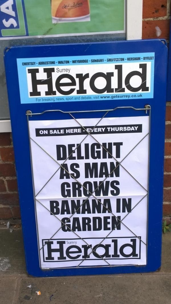 Sure, someone grew a banana, British media. Sure they did.