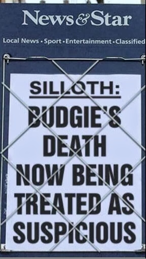 But the budgie's death is suspicious? My question is, why wasn't it suspicious before? What weren't you reporting?