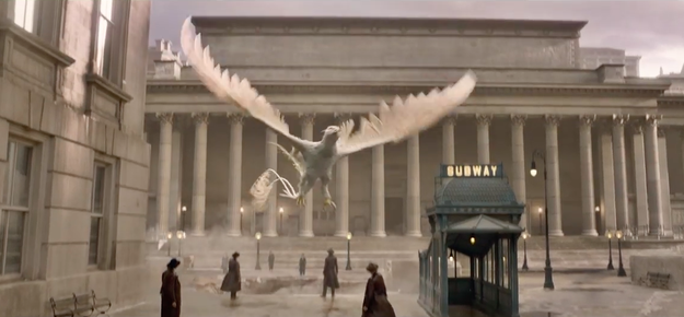 And is this a Hippogriff? Is this Buckbeak's relative?