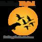 birddogdigitalmedia1