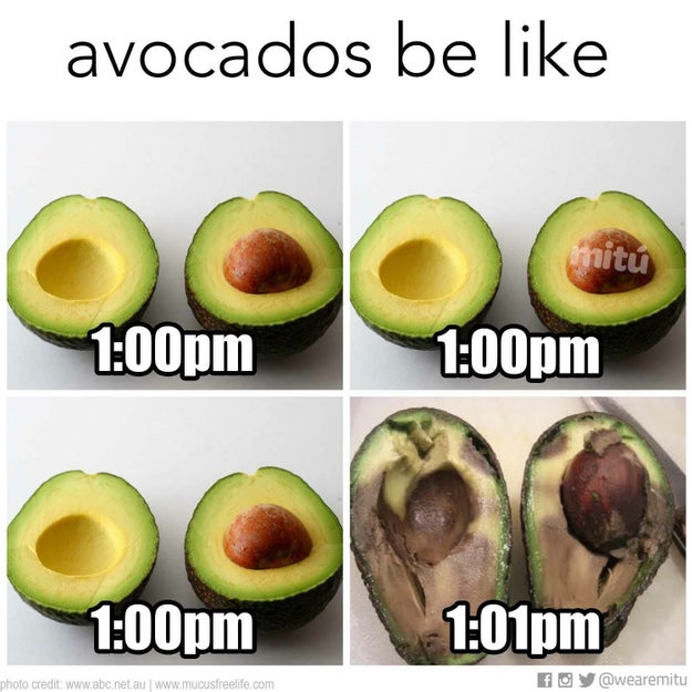 The struggle of cutting into an avocado and immediately needing to consume it before it turns brown is REAL.
