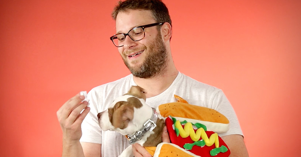 Seth Rogen Answers Questions From Puppies In Hot Dog Costumes