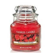 Pick The Best Red Scent