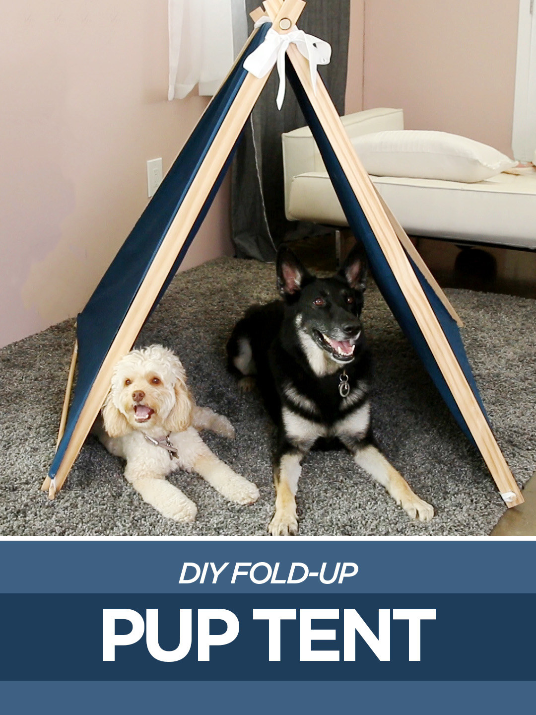 Share On facebook Share ... & This DIY Pup Tent Rolls Up In Seconds