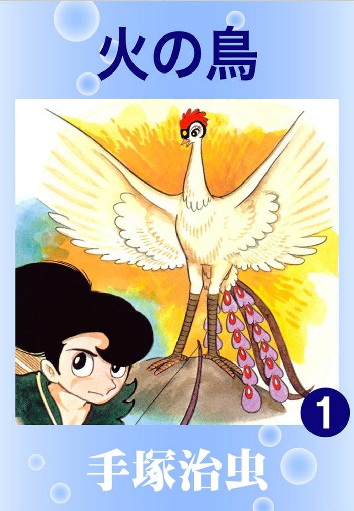 手塚先生がライフワークにしていた傑作「火の鳥」もあります。ただし読み放題は5巻までで、6巻以降は購入が必要。作品の中でも評価の高い「鳳凰編」が途中までしか読めないのが切ない(涙)手塚作品では「ブラックジャック」「鉄腕アトム」「陽だまりの樹」は5巻まで。「ジャングル大帝」「アドルフに告ぐ」「奇子」は全巻読めます。「人間昆虫記」もあるよ!