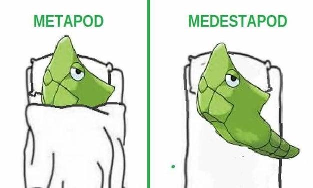 Y así Metapod.