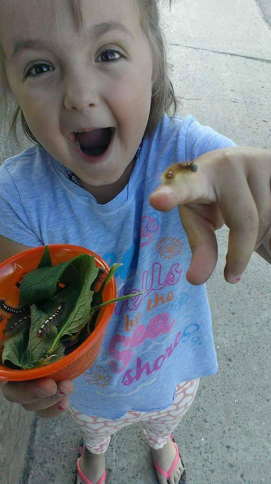 There Was A Huge Outpouring Of Support For This Little Girl Who Got Bullied For Loving Bugs