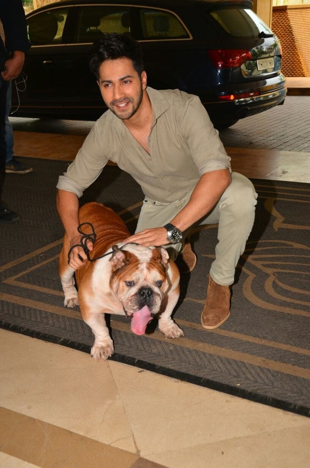 Guys, meet Maximus, a.k.a. the most important actor in Varun Dhawan and John Abraham-starrer Dishoom.