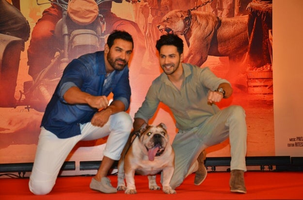 Being one of the most essential cast members, Maximus attended the press conference to celebrate the movie's success.