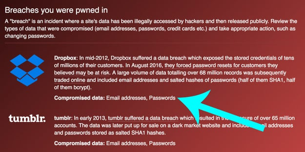 The site reveals which data associated with your email has been compromised.
