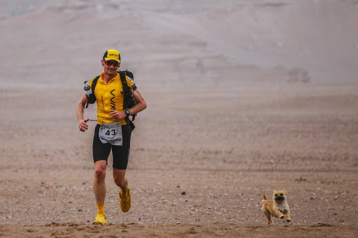 "The dog ran 22 miles with Leonard on this day of the race which is also called the inaugural ""Gobi March."""