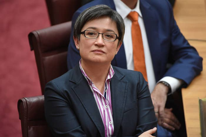 """""""There is no conflict of interest whatsoever,"""" Brandis responded.""""Since he has served in that office, he has served in an extremely diligent and admired manner.""""Brandis said he had spoken to the head of the Administrative Appeals Tribunal """"this morning"""", who had """"no criticism to offer of Mr Tavoularis's performance in the role""""."""