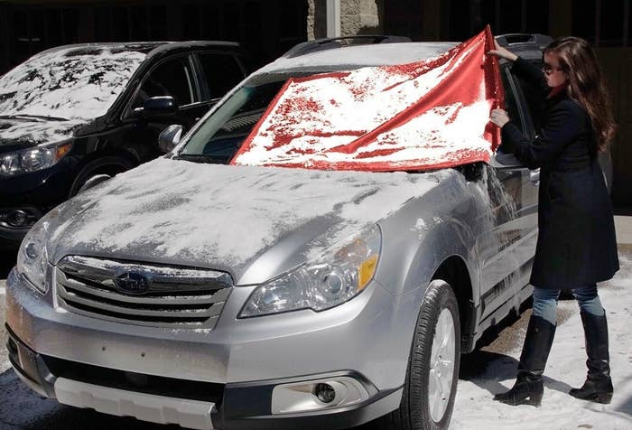 """""""If you park outside and ever deal with frost/snow/ice, your life will change after getting a Frost Guard. The best, most time saving $20 I ever spent."""" —meganj4aa442abcPrice: $20"""