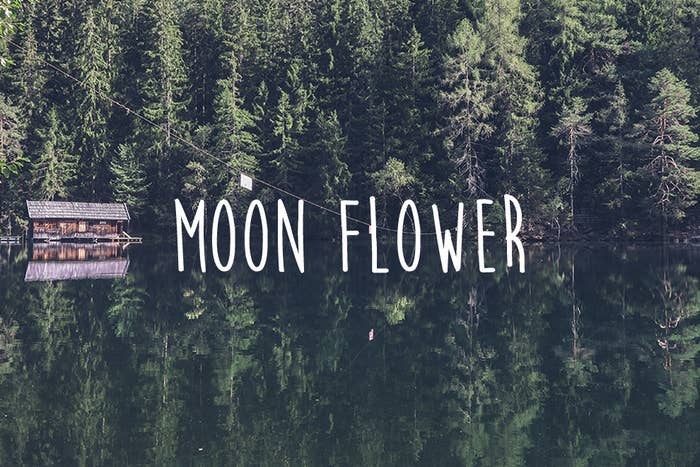 24 Gorgeous Free Fonts You Really Need To Use