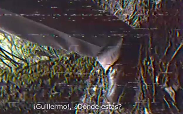Pero la investigación llegó a un abrupto fin cuando su camarógrafo, Guillermo, desapareció.