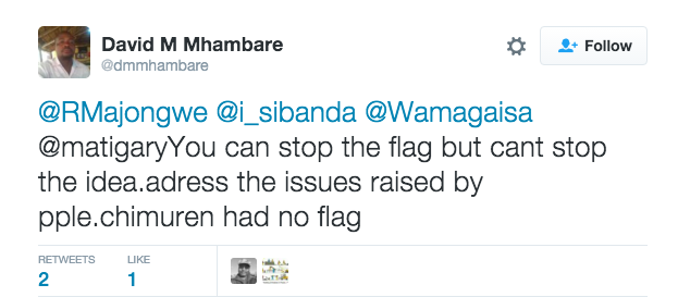 """But most protesters aren't worried. Some recalled that chimurenga — a phrase in Zimbabwe's southern Shona language for """"revolutionary struggle"""" — had no flag. And look how it turned out."""