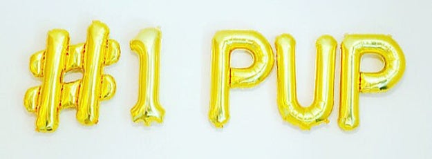 Start off strong with some glitzy balloons that spell it out for your pet who can't read.