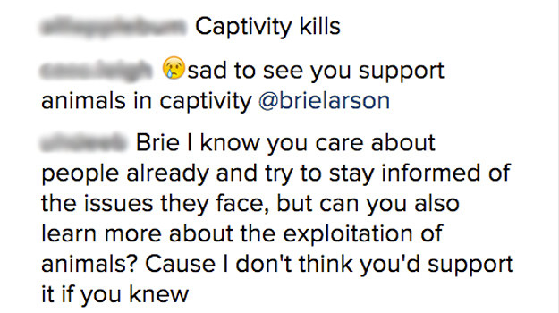 The photo received hundreds of comments from people accusing Brie of supporting animal cruelty, and suggesting that she do some research into the dangers of captivity.