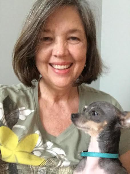 Esta é Betty McCall, professora aposentada de Rochelle, Geórgia (EUA), e seu Chihuahua de 4 anos, Poncho.