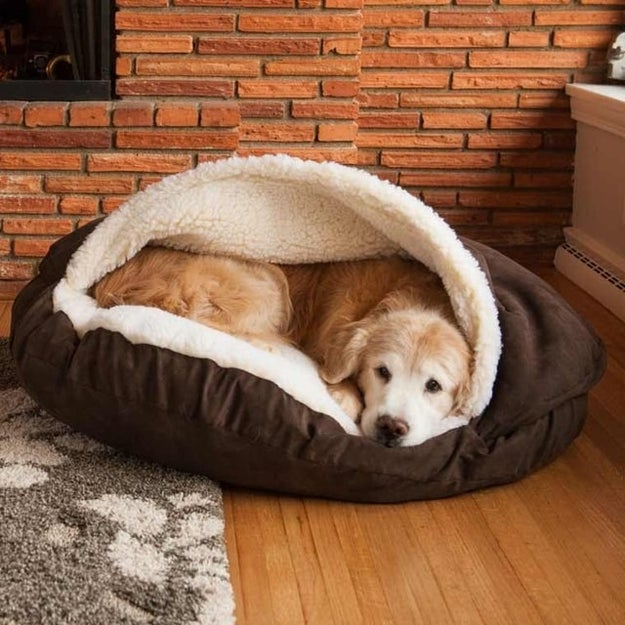 A cocoon-like pet bed to keep your bestie as cozy as you are.