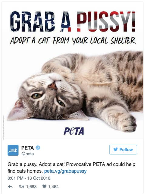 """""""PETA hopes the purrvocative ad will encourage New Yorkers to adopt one of the more than 20,000 cats taken in by city-run shelters each year,"""" its website states.It is negotiating to get the ad put up as a billboard in New York City, according to its website."""
