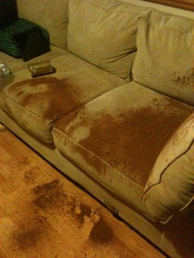 Чем освежить диван в домашних условиях 82