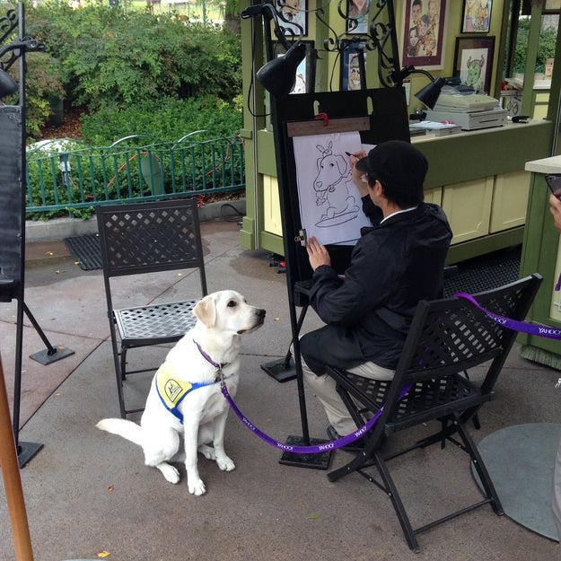 Over the weekend, 26-year-old Katie was sent a photo from her parents while they were at Disneyland. They had spotted a dog sitting at a touristy caricature portrait station, patiently waiting to get his done.