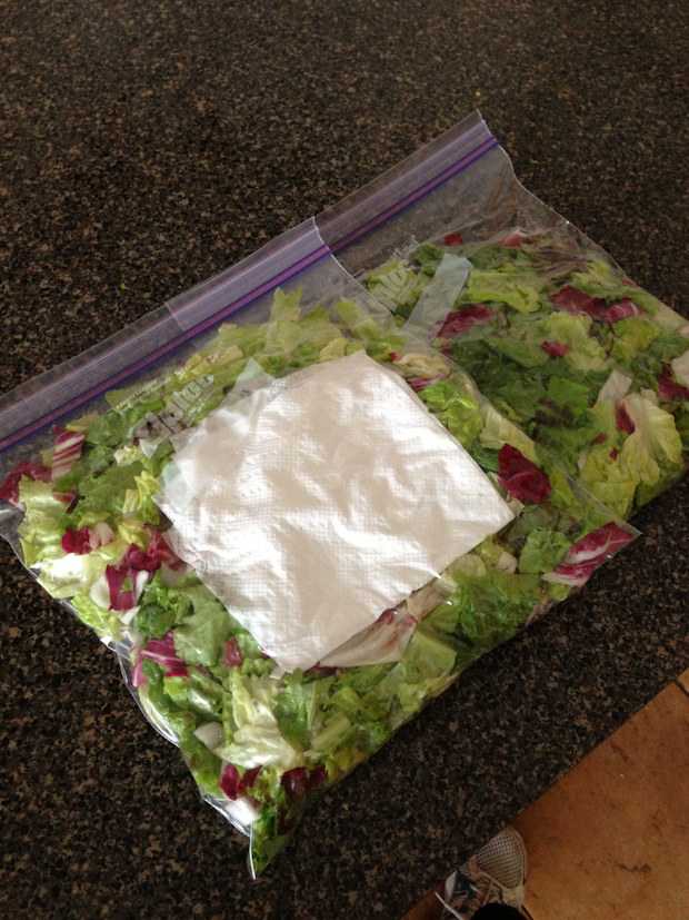 After you're done washing your produce, put it in a plastic bag or glass container with a folded-over paper towel inside.