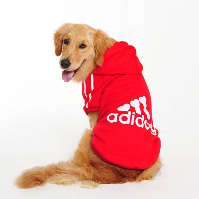 """Promising review: """"I went to Petco and PetSmart and only found tons of dog clothes for small dogs. I got the 7X based on other reviews and gotta say it's a bit big. Actually it's just long. It covers my dog well and I figured I should account for shrinkage. I have a 45 lb. pit bull."""" —E kimPrice: $5.99+ / Rating: 4.3/5 / Sizes: 3XL-9XL / Colors: black, gray, red, yellow"""